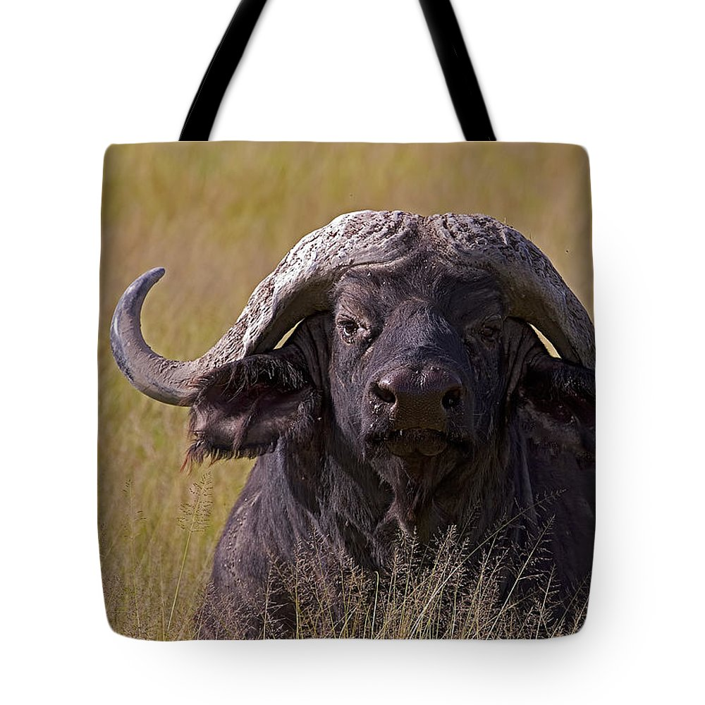Syncercus Caffer Tote Bag featuring the photograph Cape Buffalo  #0609 by J L Woody Wooden