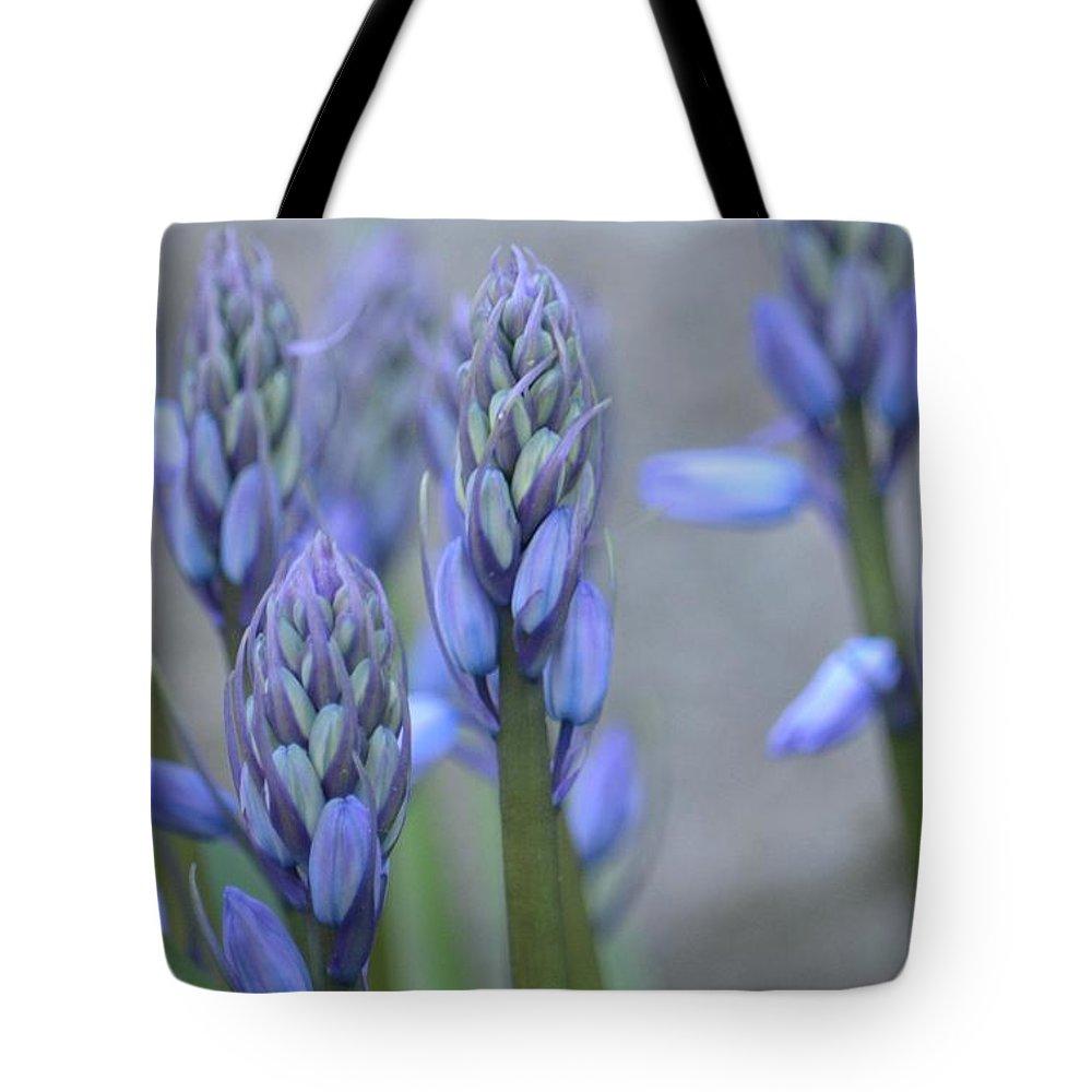 Captivating Campanula Tote Bag featuring the photograph Captivating Campanula by Maria Urso