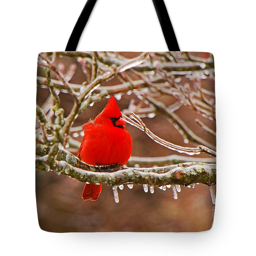 Avian Tote Bag featuring the photograph Cardinal by Mary Carol Story