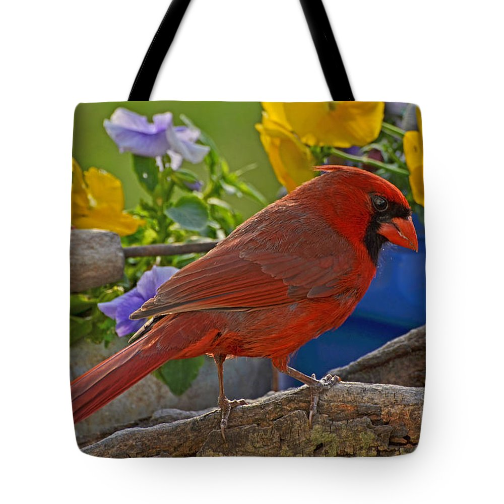 Nature Tote Bag featuring the photograph Cardinal With Pansies by Debbie Portwood