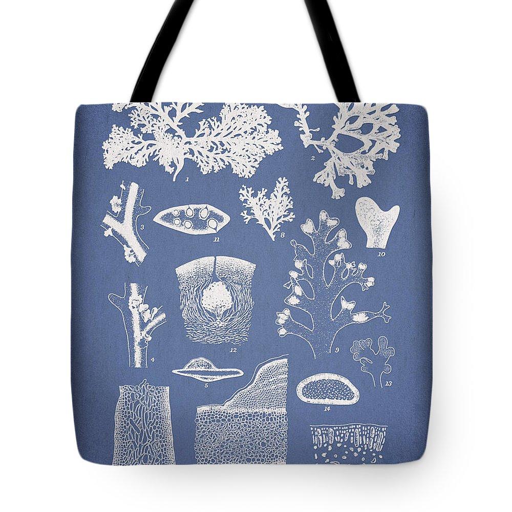 Algae Tote Bag featuring the digital art Carpopeltis Rigida by Aged Pixel