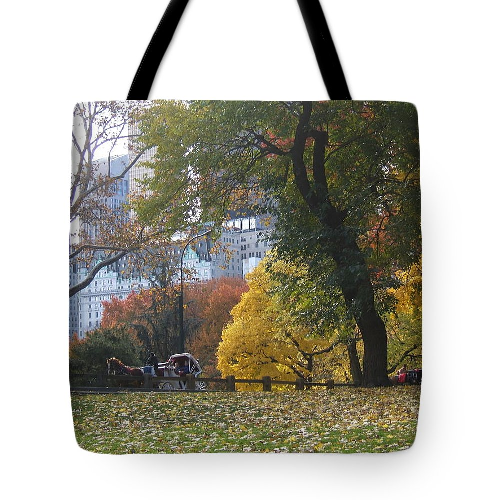 central Park Tote Bag featuring the photograph Carriage Ride Central Park In Autumn by Barbara McDevitt