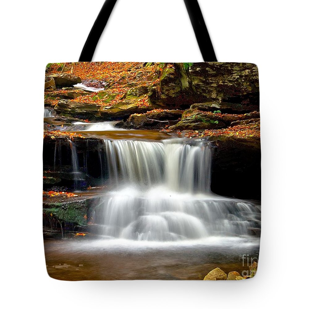 Waterfall Tote Bag featuring the photograph Cascades At Ricketts Glen by Nick Zelinsky