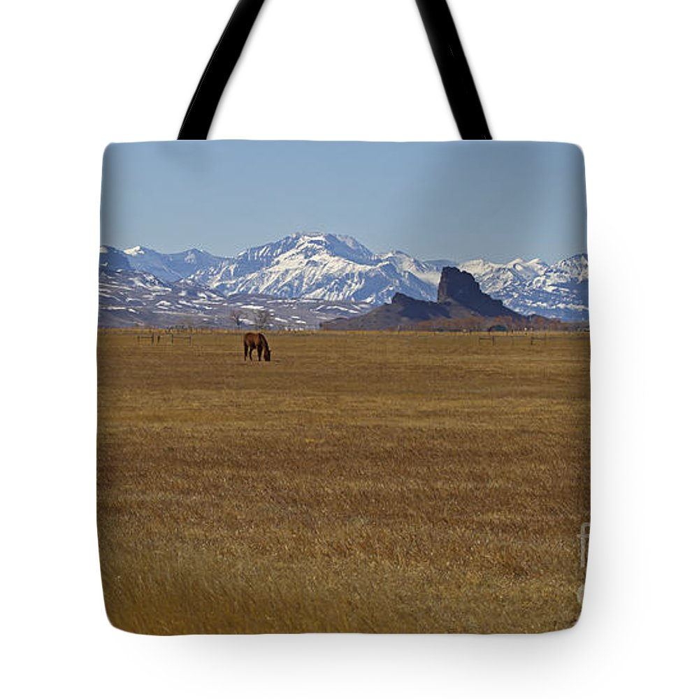 Horses Tote Bag featuring the photograph Castle Rock Horses  #8515 by J L Woody Wooden