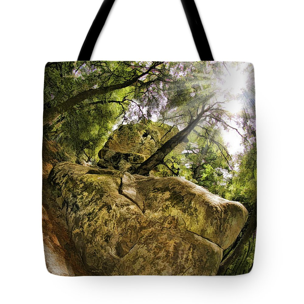Castle Rock State Park Tote Bag featuring the photograph Castle Rock State Park Bolder by Blake Richards