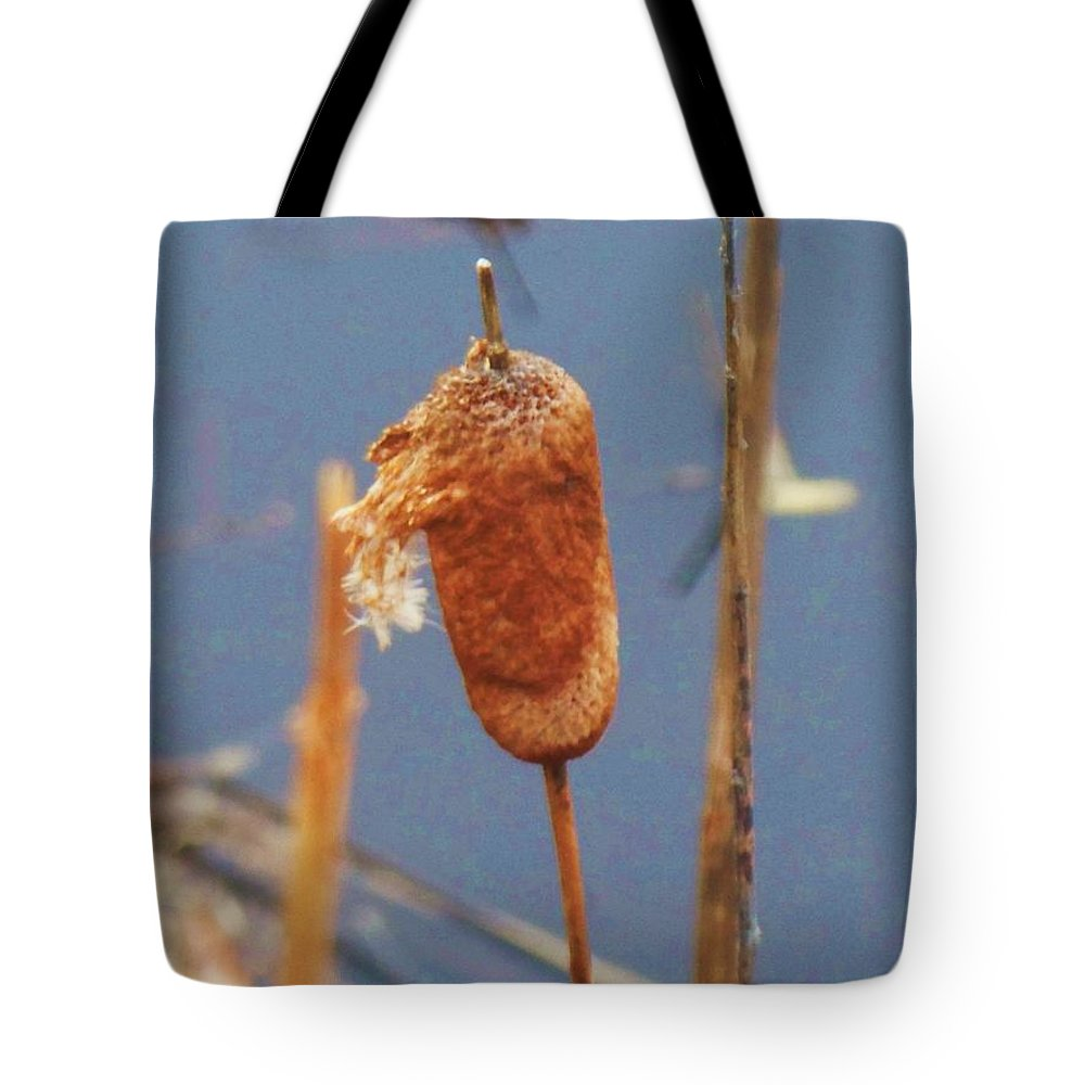 Lake Tote Bag featuring the photograph Catails by Eric Schiabor