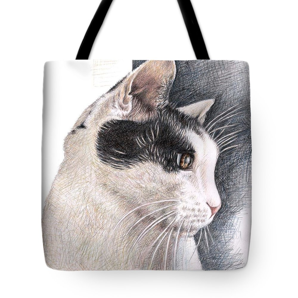 Cat Tote Bag featuring the drawing Cats View by Nicole Zeug