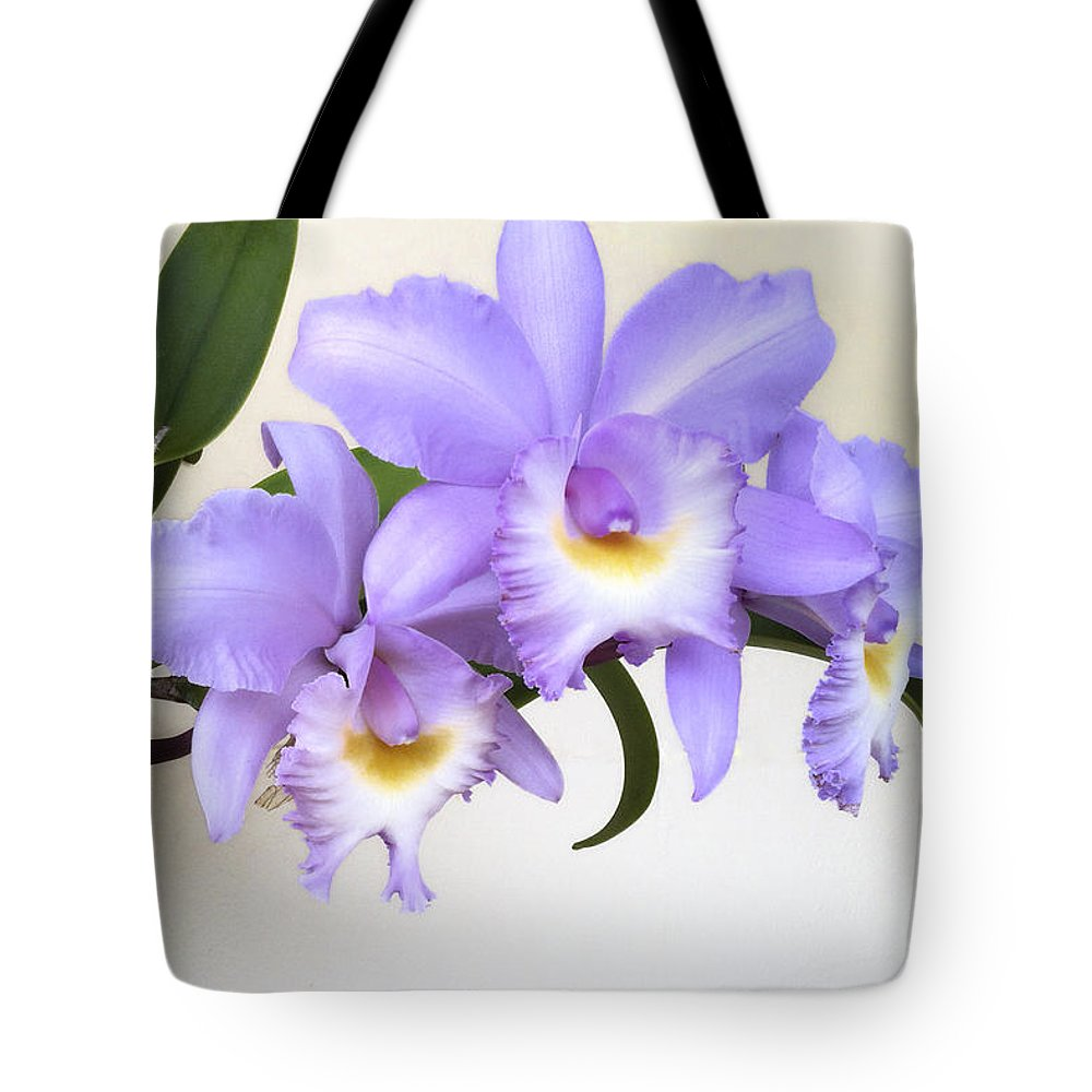 Orchid Tote Bag featuring the photograph Cattleya Orchid by Bradford Martin