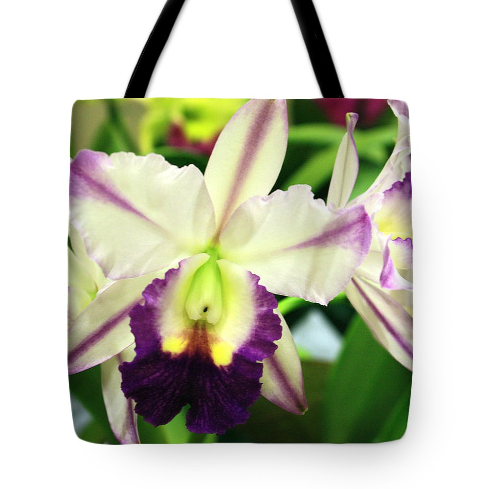 Cattleya Tote Bag featuring the photograph Cattleya Orchid by Nancy Chenet
