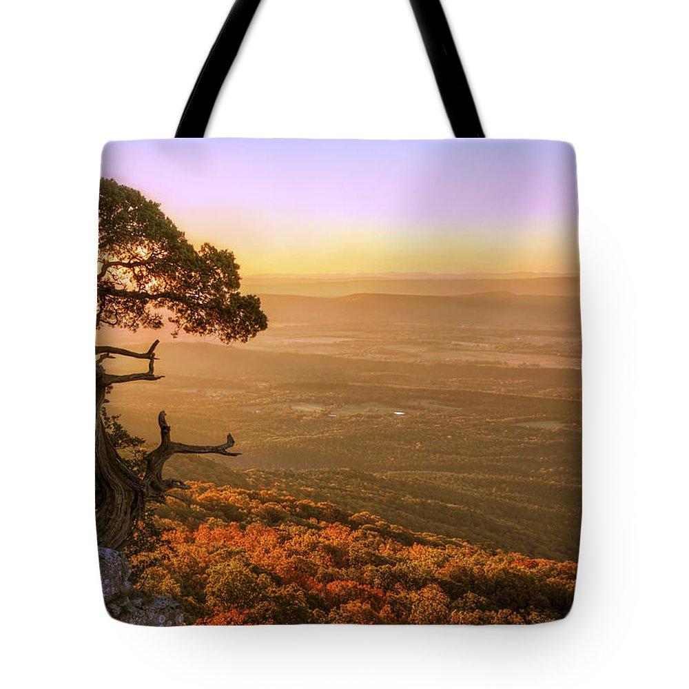 Mt. Magazine Tote Bag featuring the photograph Cedar Tree Atop Mt. Magazine - Arkansas - Autumn by Jason Politte