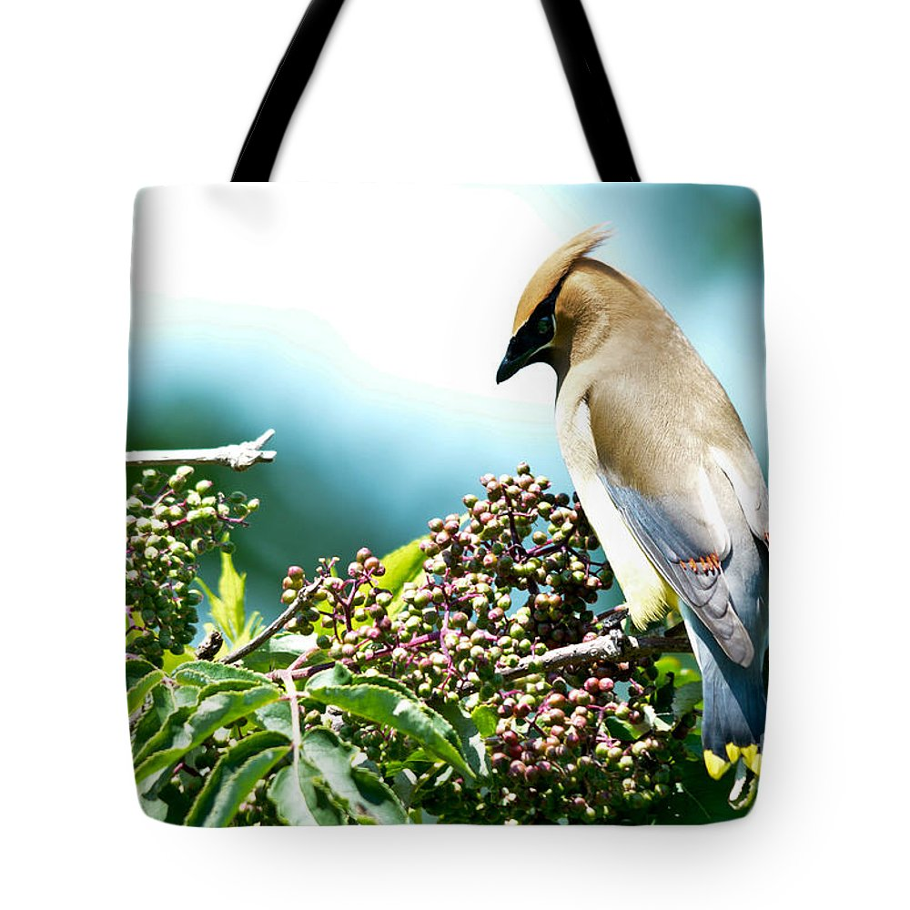 Cedar Waxwing Tote Bag featuring the photograph Cedar Waxwing Pose by Cheryl Baxter