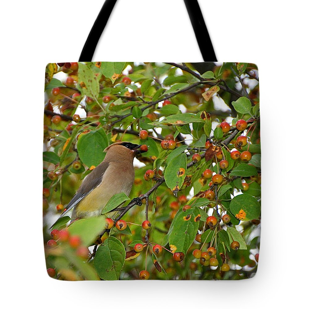 Bird Tote Bag featuring the photograph Cedar Waxwing by Susan Herber