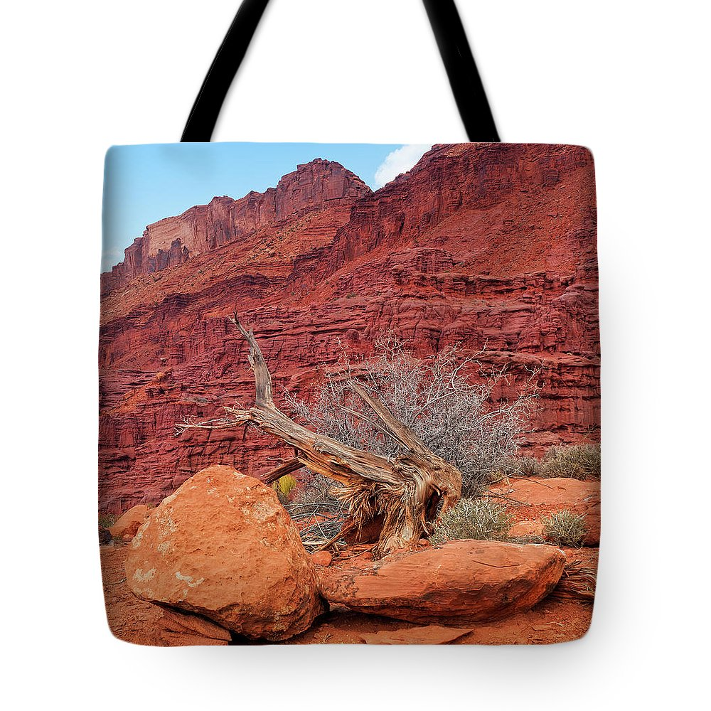 Cedar Tree Tote Bag featuring the photograph Cedar Wood Tree, Fisher Towers, Moab by Fotomonkee