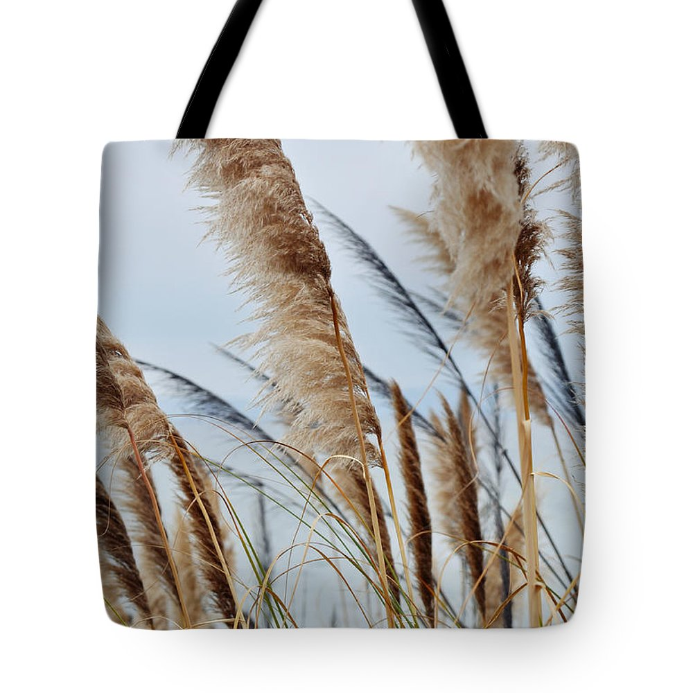Pampas Grass Tote Bag featuring the photograph Central Coast Pampas Grass II by Kyle Hanson