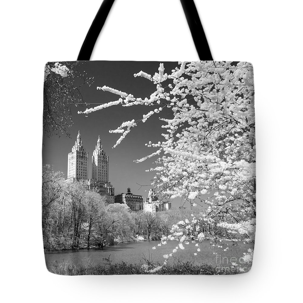 Aerial Tote Bag featuring the photograph Central Park - Nyc by Luciano Mortula