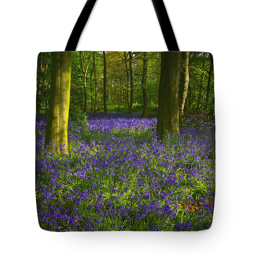 Bluebells Tote Bag featuring the photograph Chalet Wood Wanstead Park Bluebells by David French