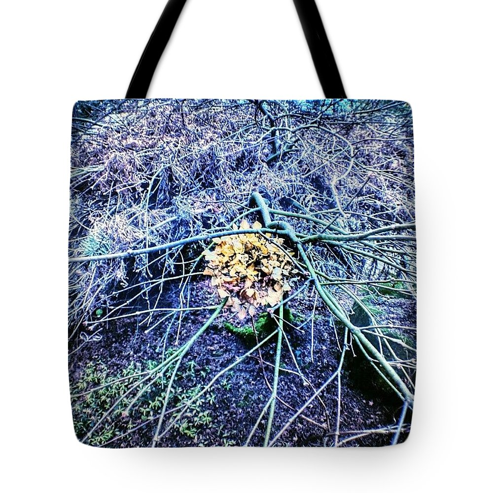 Chaotic Tote Bag featuring the photograph Chaotically Enmeshed by Anna Porter