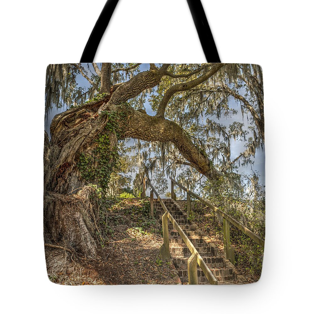 Live Oak Tree Tote Bag featuring the photograph Charleston Oak Stairway by Dale Powell
