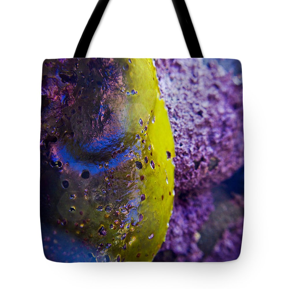 Adria Trail Tote Bag featuring the photograph Chartreuse by Adria Trail