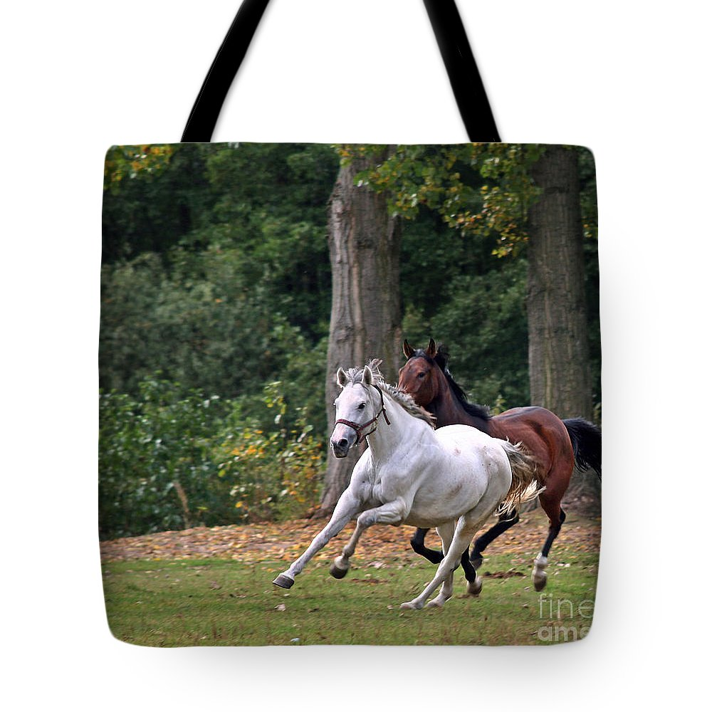 Horse Tote Bag featuring the photograph Chasing The Wind by Angel Ciesniarska