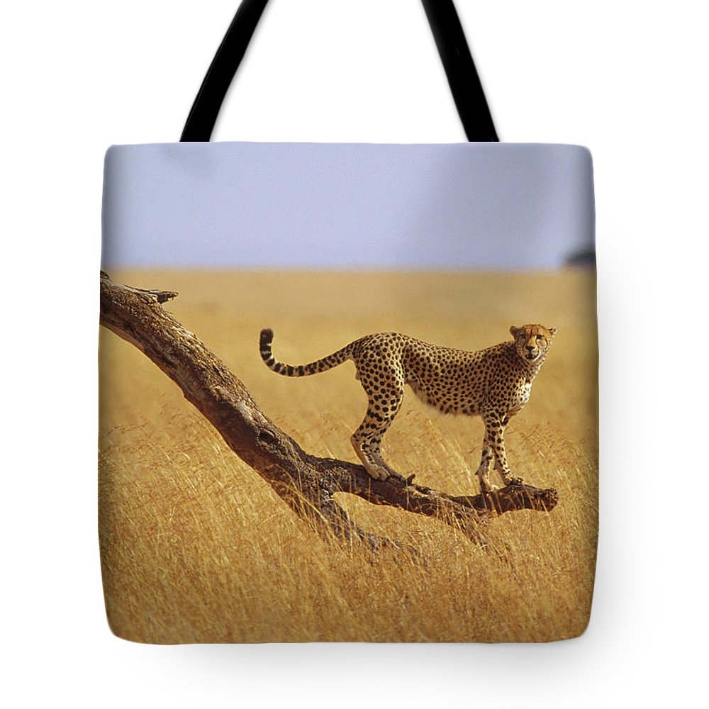 Acinonyx Jubatus Tote Bag featuring the photograph Cheetah Standing On Dead Tree by Gerry Ellis