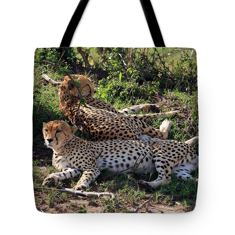 Africa Tote Bag featuring the photograph Cheetahs Of The Masai Mara by Aidan Moran