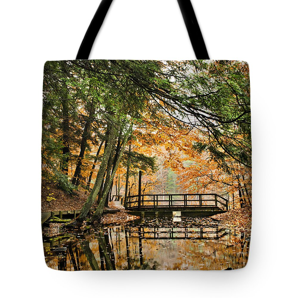 Sunrise Tote Bag featuring the photograph Chenango Valley State Park by Christina Rollo
