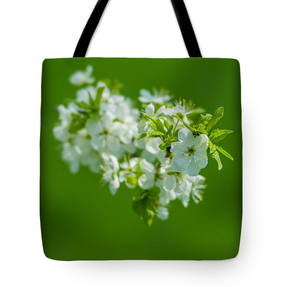 Background Tote Bag featuring the photograph Cherry Blossom Featured 3 by Alexander Senin