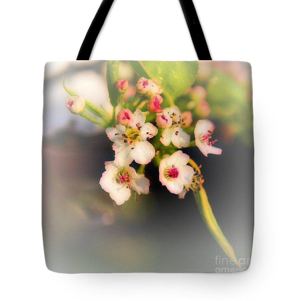Cherry Blossom Tote Bag featuring the photograph Cherry Blossom Flowers by Jeremy Hayden