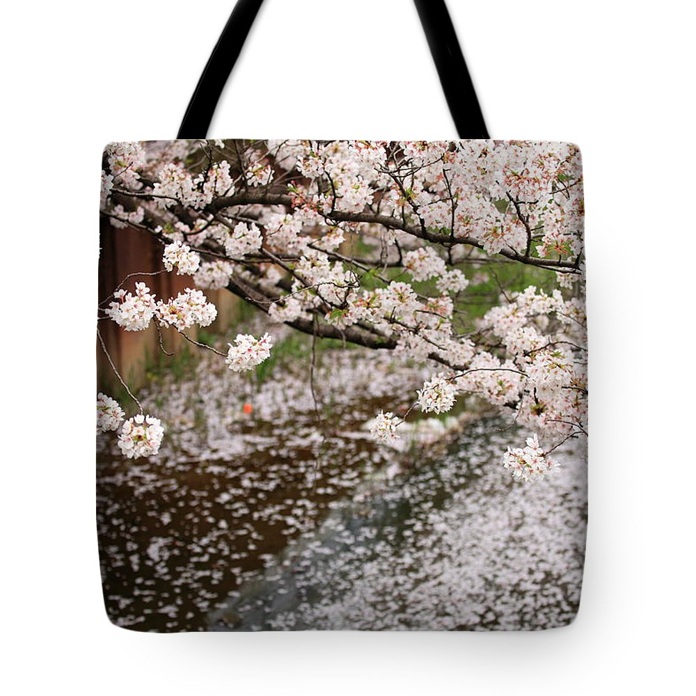 Season Tote Bag featuring the photograph Cherry Blossoms by Photography By Zhangxun