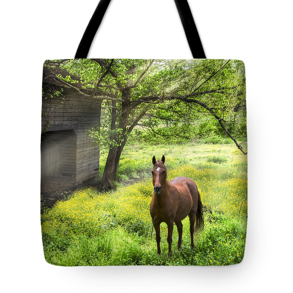 Appalachia Tote Bag featuring the photograph Chestnut Horse In A Sunny Meadow by Debra and Dave Vanderlaan