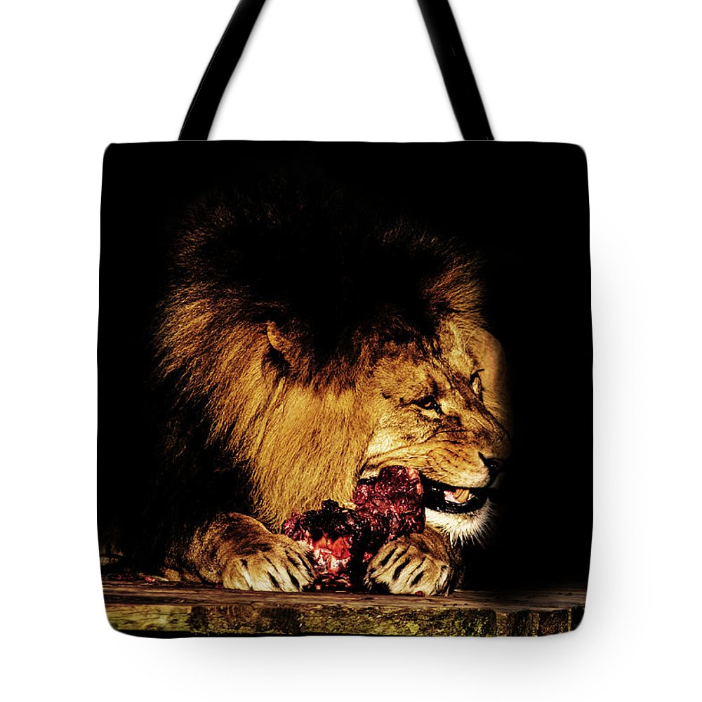 Lion Tote Bag featuring the photograph Chew On That by Martin Newman