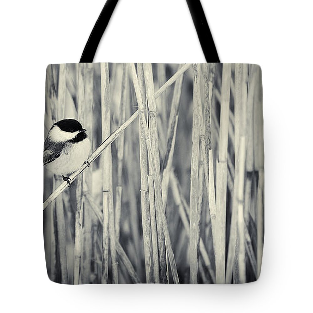 Bird Tote Bag featuring the photograph Chickadee In The Redds by Peter v Quenter