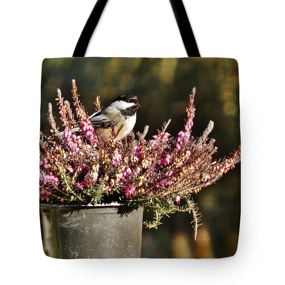 Bird Tote Bag featuring the photograph Chickadee On Heather by VLee Watson