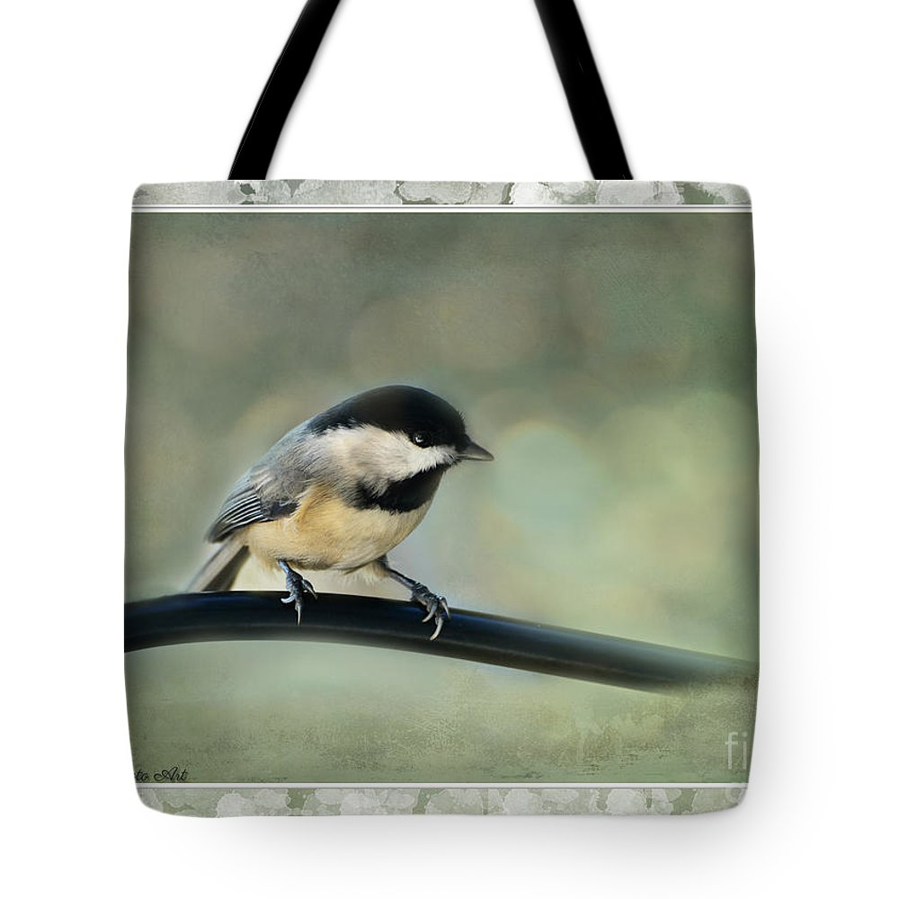 Nature Tote Bag featuring the photograph Chickadee With Frame by Debbie Portwood