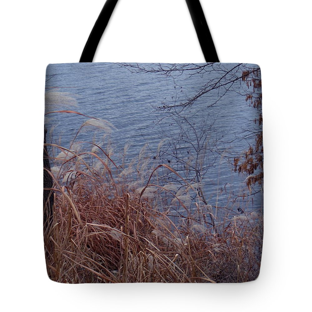 Autumn Tote Bag featuring the photograph Chill by Wild Thing