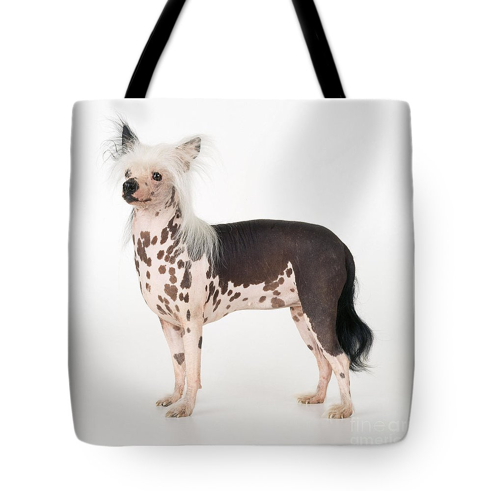 Chinese Crested Tote Bag featuring the photograph Chinese Crested Dog by John Daniels