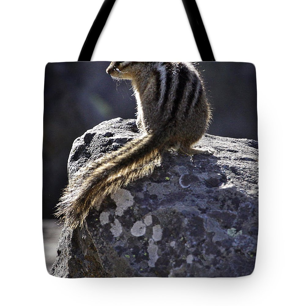 Chipmunk Tote Bag featuring the photograph Chipmunk  #2152 by J L Woody Wooden