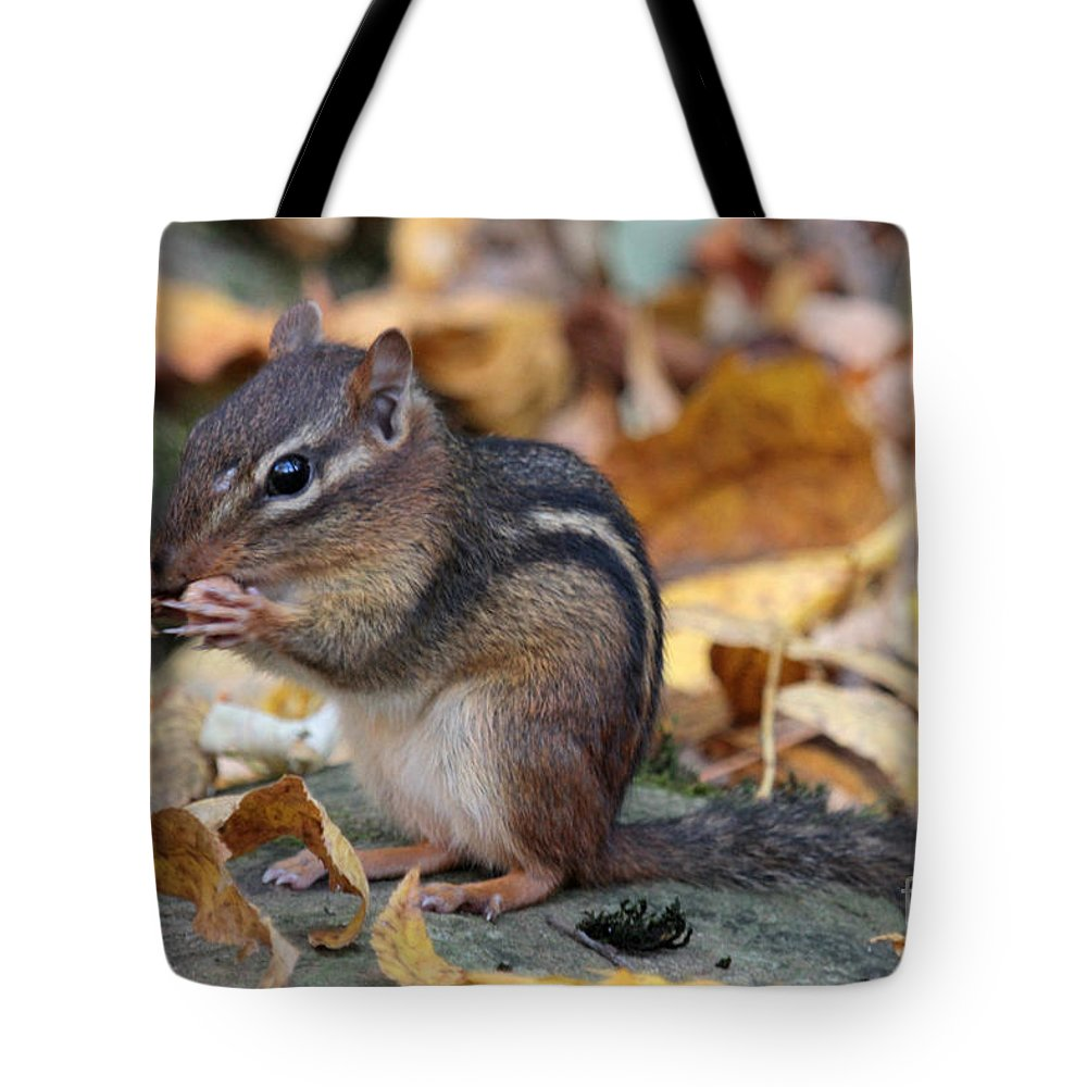 Chipmunk Tote Bag featuring the photograph Chipmunk Hungry by Dwight Cook