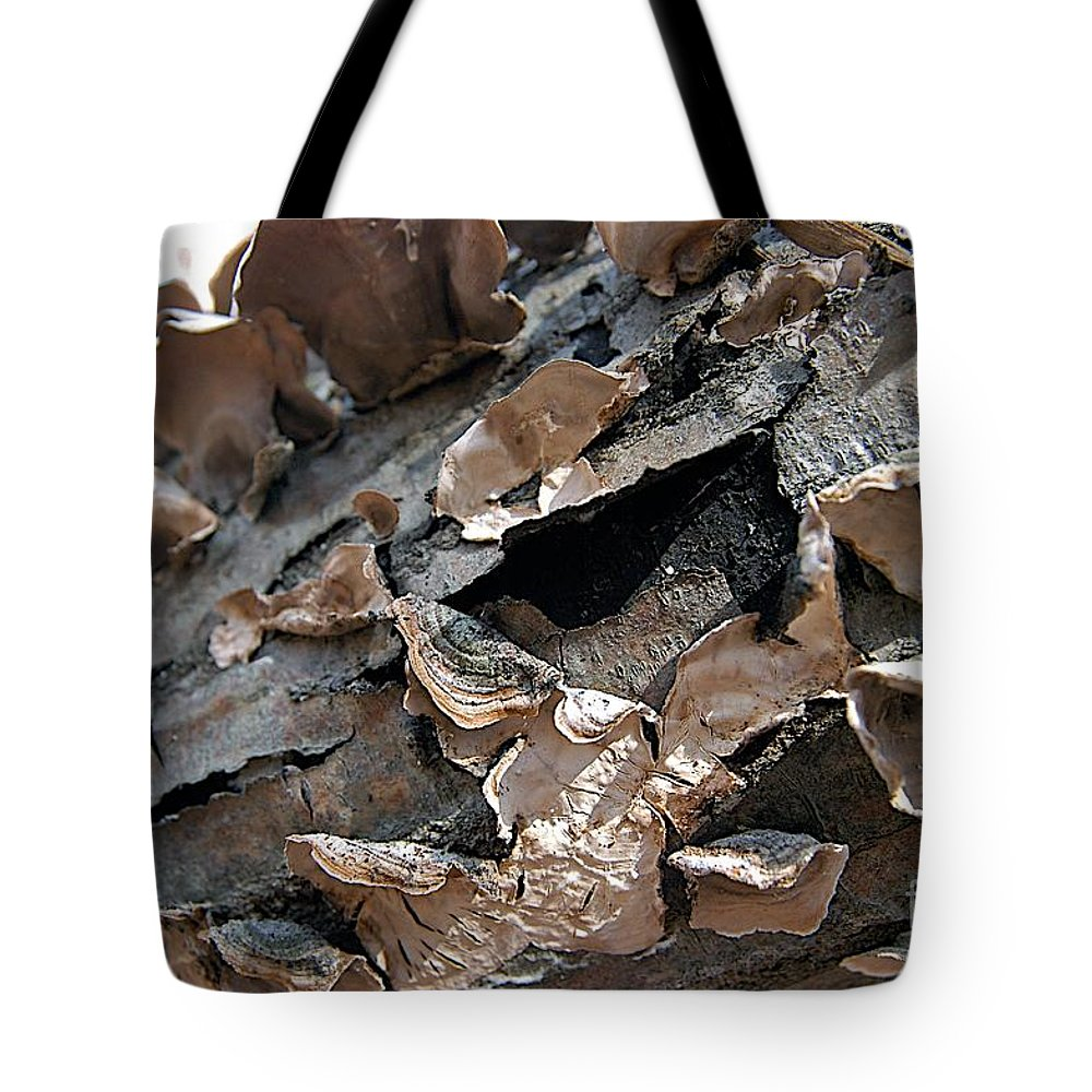 Bark Tote Bag featuring the photograph Chips by Joseph Yarbrough