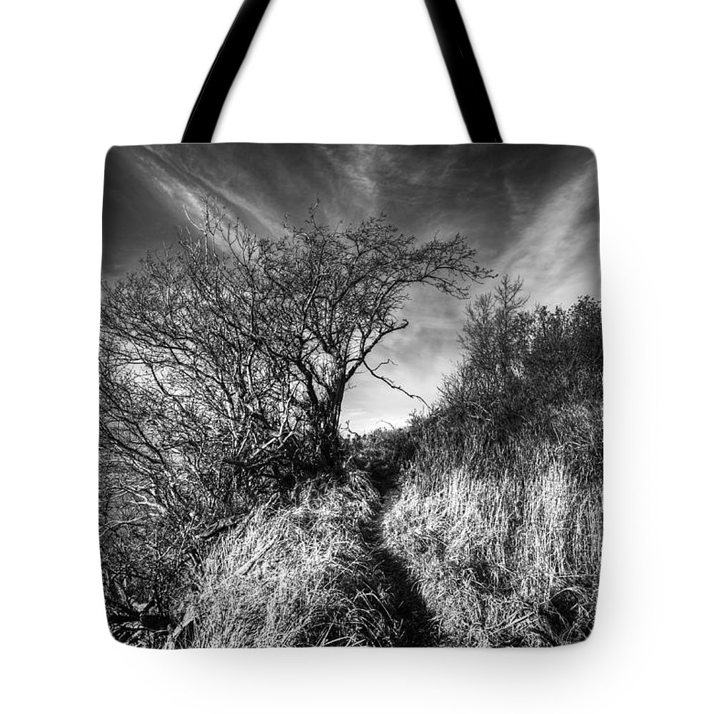 Kincaid Park Tote Bag featuring the photograph Chosen Path by Ted Raynor