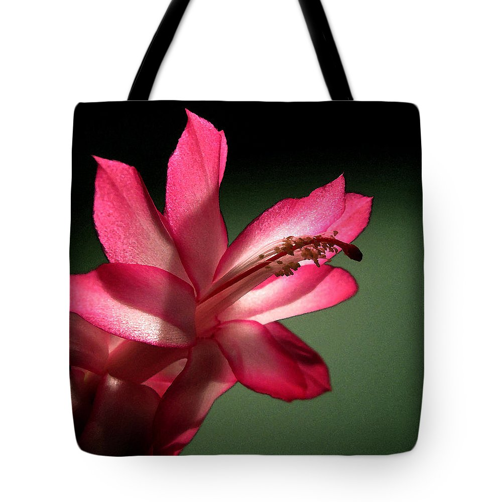 Christmas Cactus Tote Bag featuring the photograph Christmas Cactus by Mary Bedy