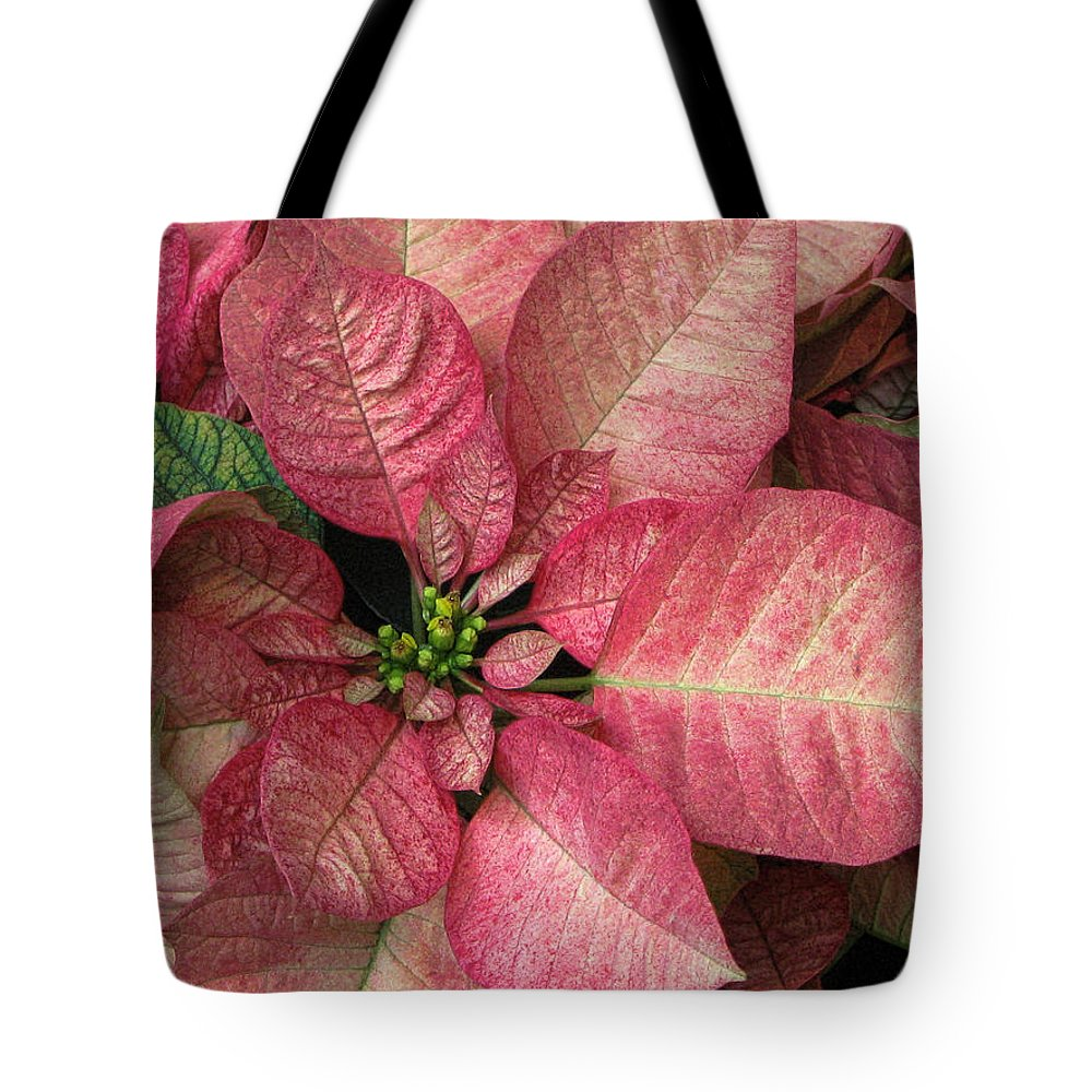 Flower Tote Bag featuring the photograph Christmas Flower by Tammy Espino