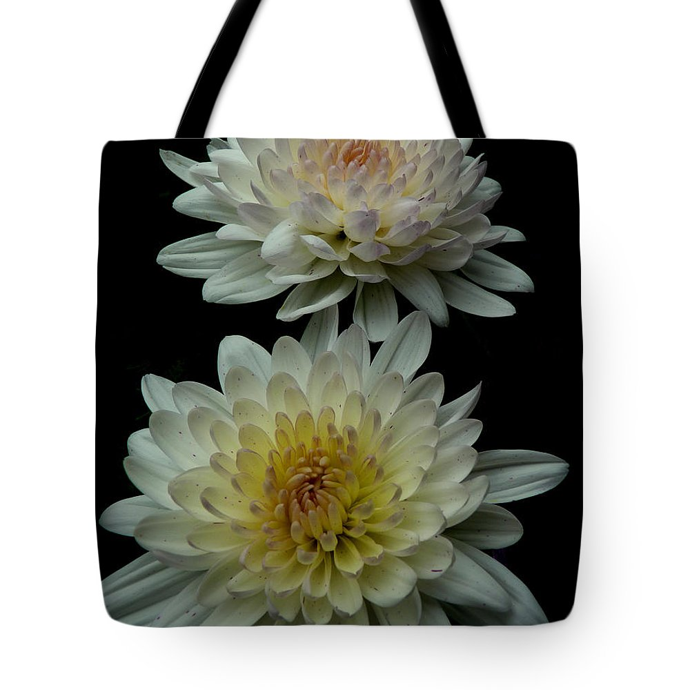 Flowers Chrysanthemum Garden Nature Tote Bag featuring the photograph Chrysanthemum by Diane Hawkins
