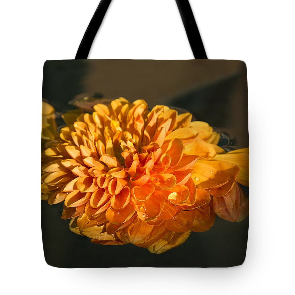 Georgia Mizuleva Tote Bag featuring the photograph Chrysanthemum Gently Floating In The Fountain Of Campo De Fiori - Rome - Italy by Georgia Mizuleva