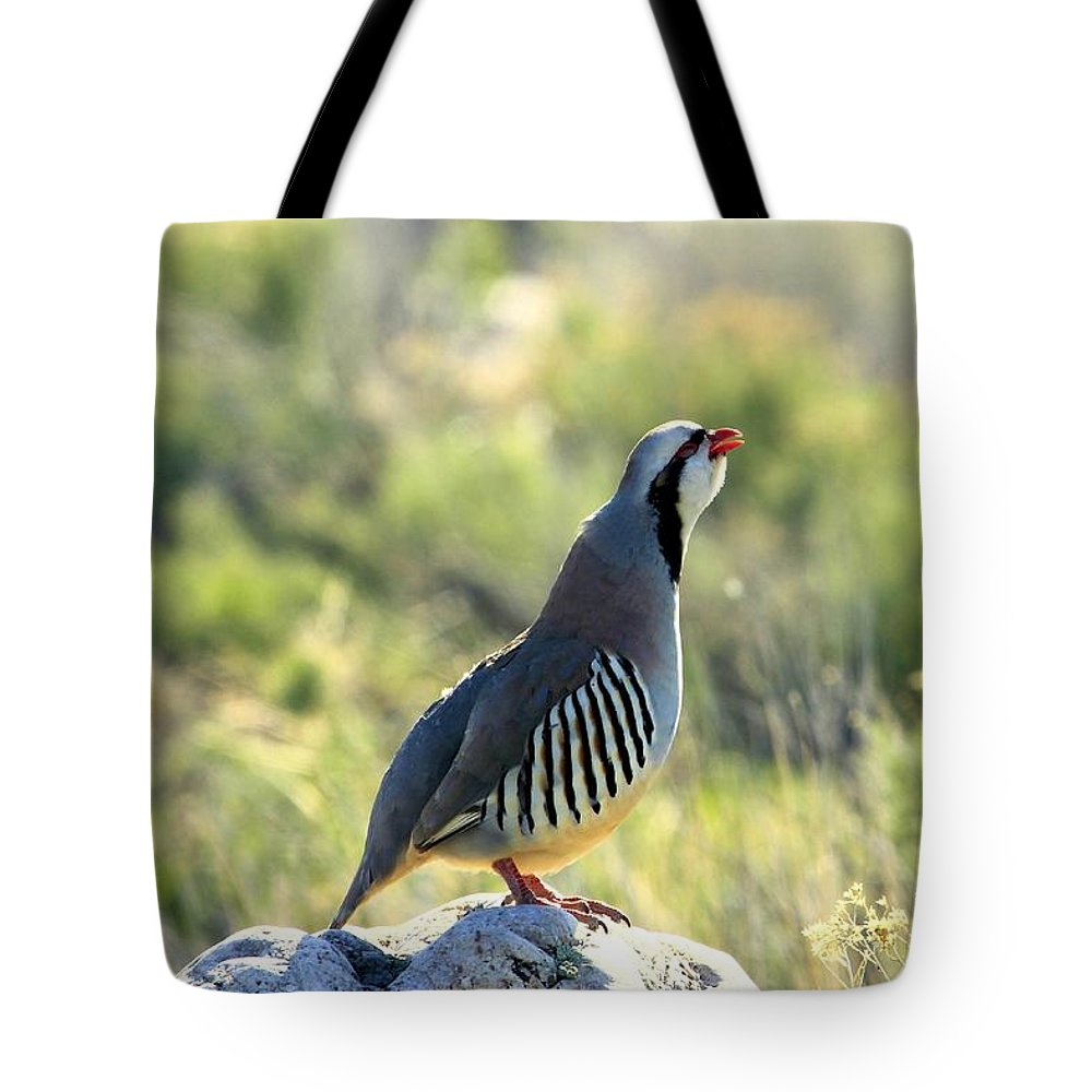 Chukar Tote Bag featuring the photograph Chukar Crow by Roxie Crouch