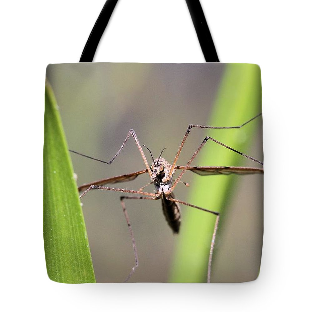 Crane Fly Tote Bag featuring the photograph Cirque Du Soleil - Crane Fly Style by Doris Potter