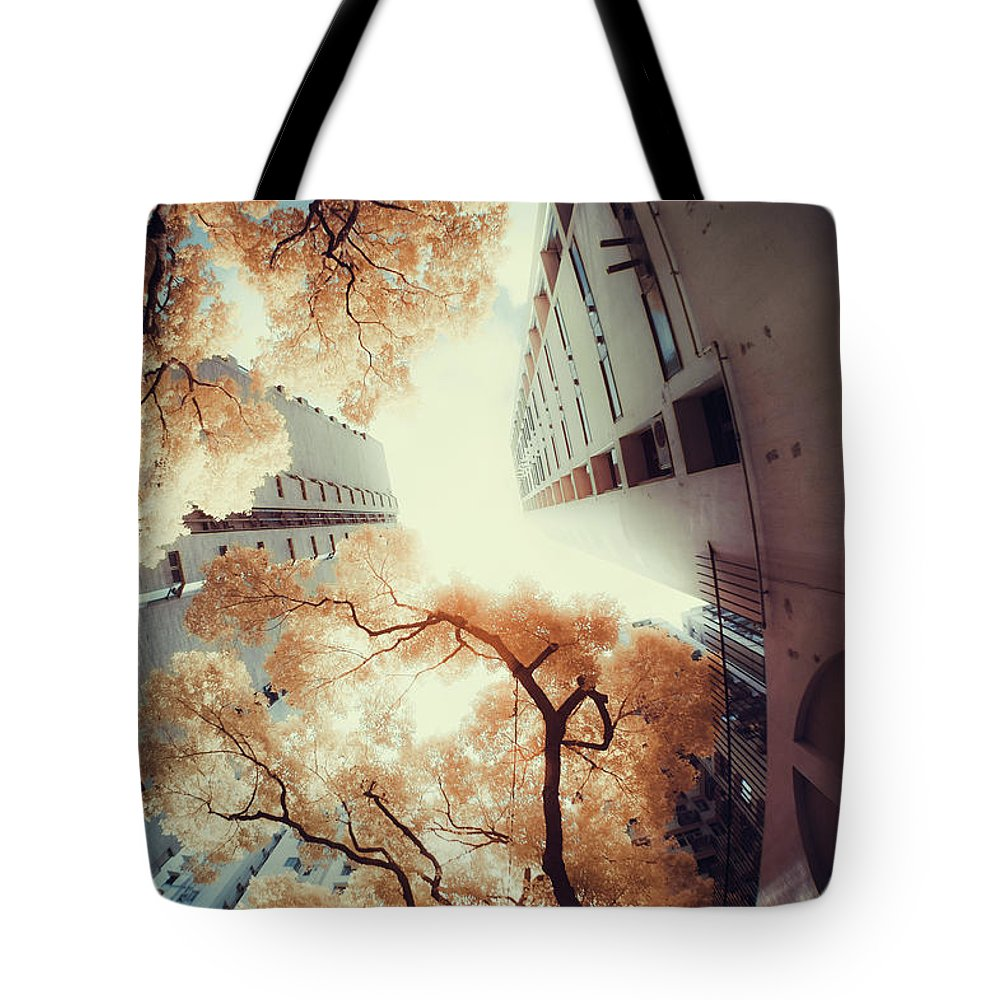 Tranquility Tote Bag featuring the photograph City In Harmony With Nature by D3sign