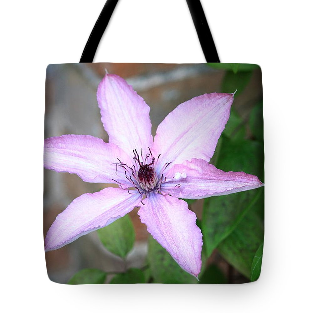 Clamatis Tote Bag featuring the photograph Clamatis by Kevin F Cook