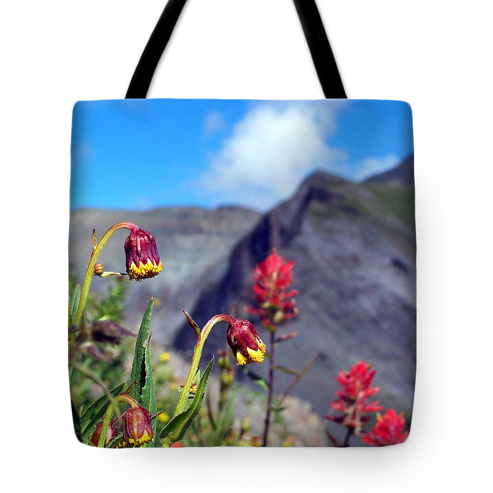 Bridge To Heaven Trail Tote Bag featuring the photograph Clarity by Jennifer Robin